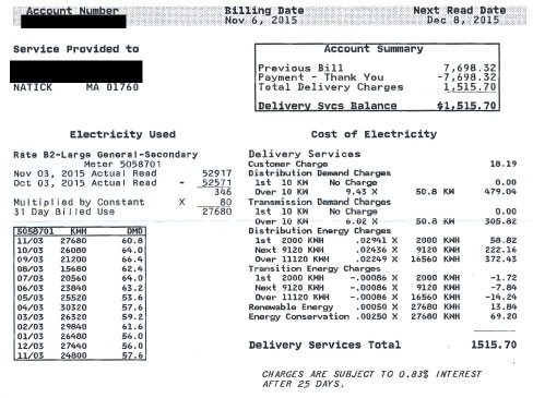 How to read your electric bill: delivery